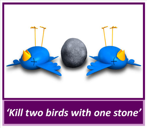 20_ kill two birds with one stone