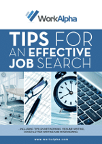 Job Search eBook Cover