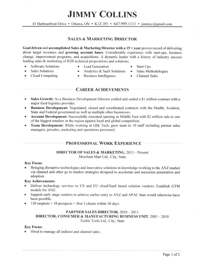 sales director resume