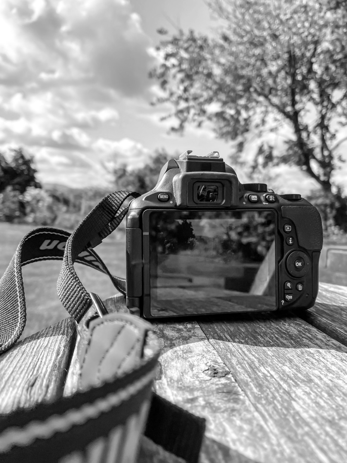 Black and white image of a digital camera on a wooden bench