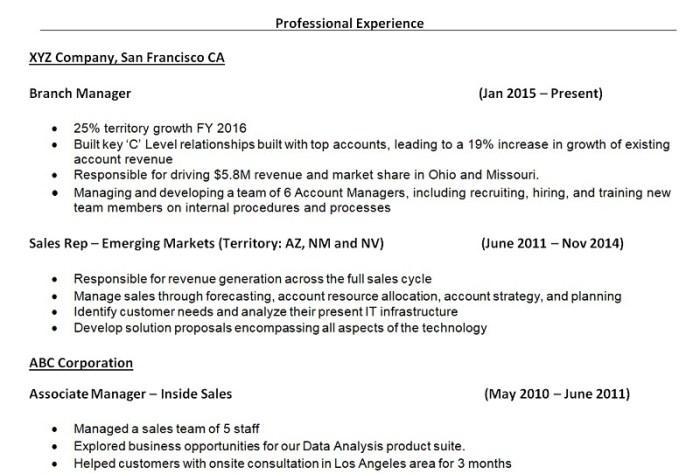 sample resume work history