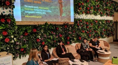 States must be more ambitious with regard to climate change education and training