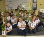 Costa Rica makes two years of pre-primary education compulsory