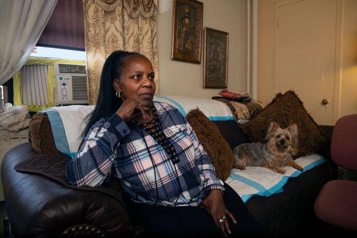 NYCHA Monitor, Mold Protections Vanish for Tenants Under Private Management