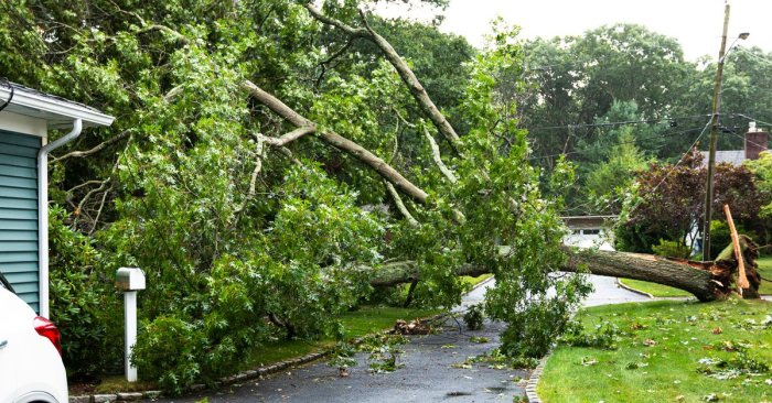 Union Members Restore Power After Hurricane Isaias