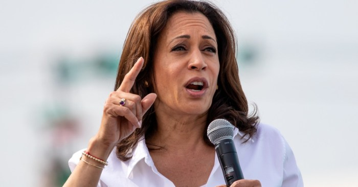 "Jamaican Descent US VP Candidate Kamala Harris Makes Time Magazine ""Most Influential"" List for 2020"