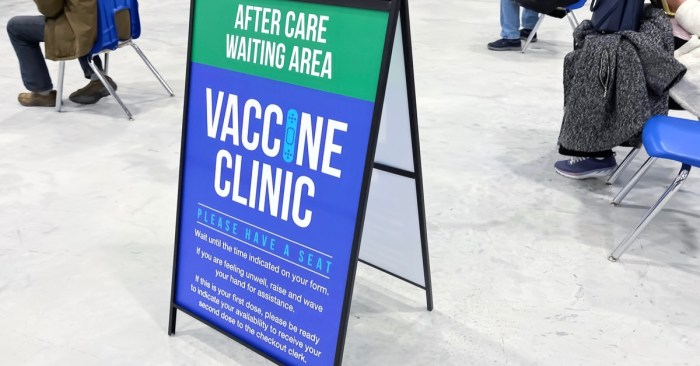 Investigating the Role of COVID-19 Pandemic Vaccine Rollout Among Immigrants and NYC's Council Election