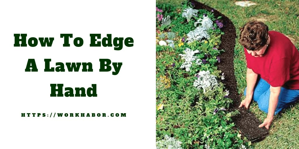 How To Edge A Lawn By Hand And Other Valuable Tips