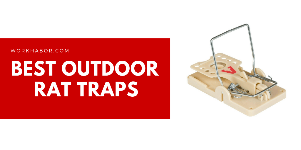 Best Outdoor Rat Traps