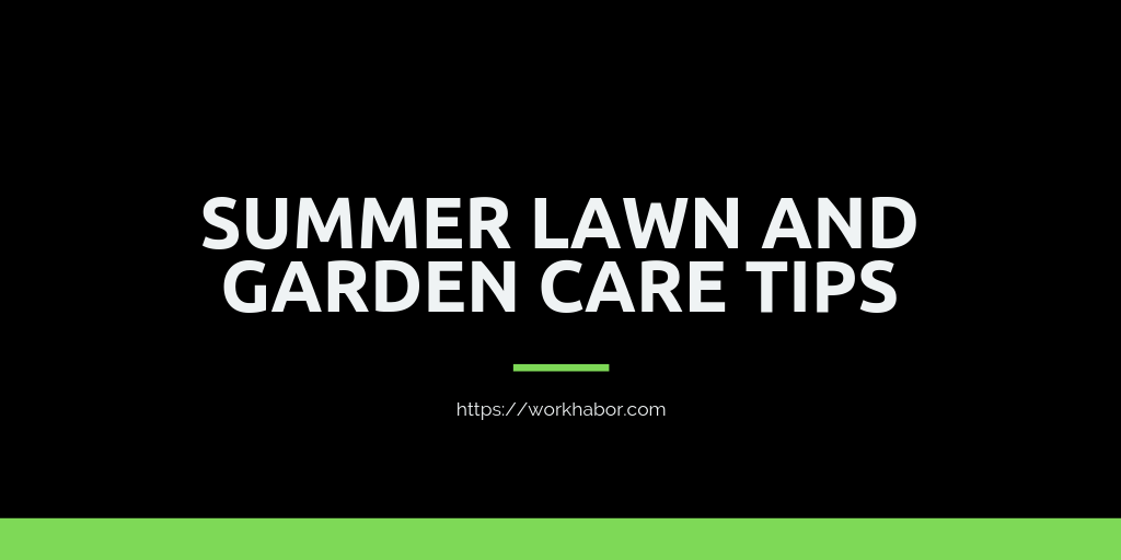 Summer Lawn And Garden Care Tips