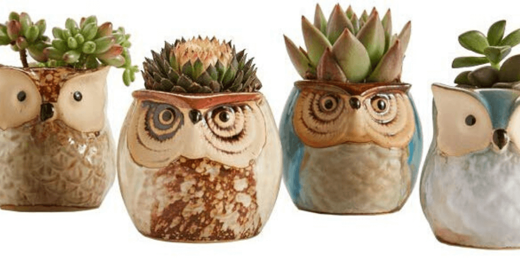 Genius Gift Ideas For Gardeners