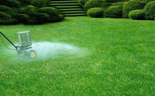 When To Add Lime To Lawn