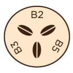 [infographic] B2, B3, B5 vitamins