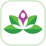 Yoga Studio app icon