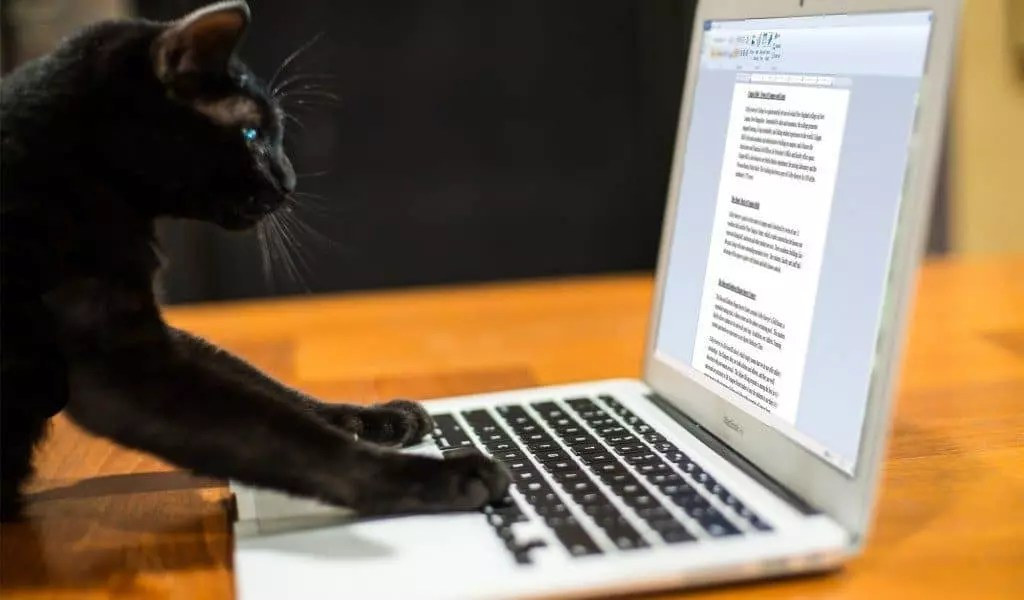 Tác giả viết bài PR