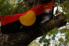 An Aboriginal flag flies from a tree about the fire.