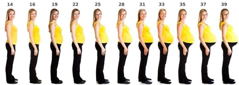 Pregnancy Risk Assessment