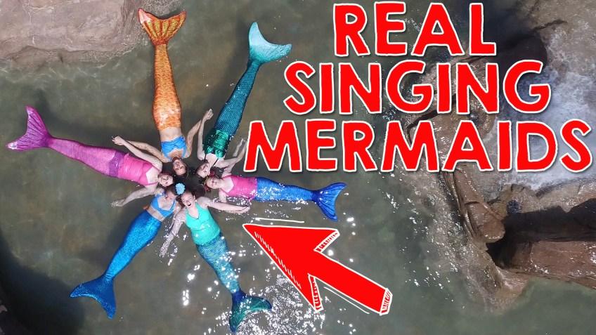 Real Singing Mermaids