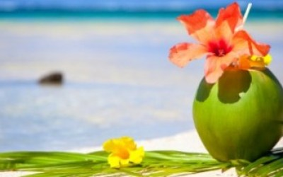 beach-coconut-drink-flower-e1324491266367-48449_630x210