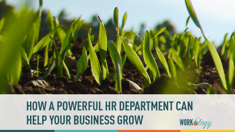 HR, Business Development, Company Growth