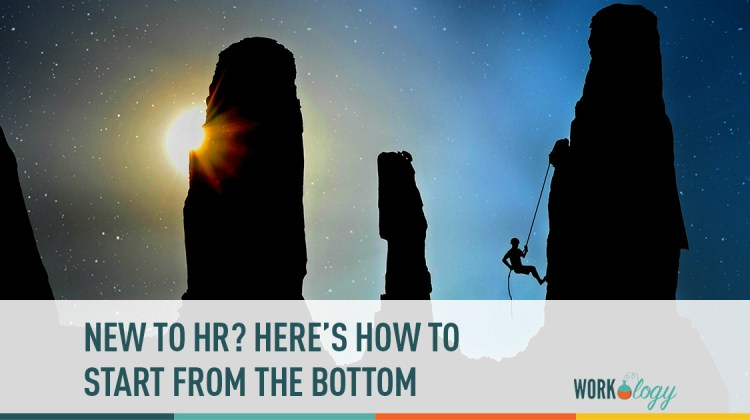 new to hr? Here's how to start from the bottom