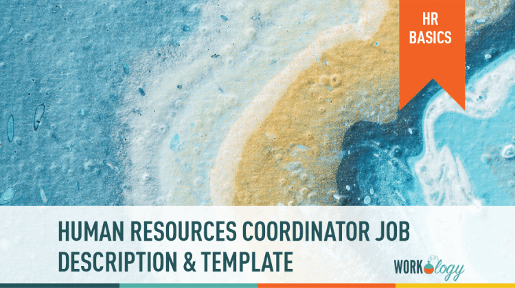 human resources HR coordinator job description template