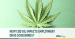 How CBD Oil Impacts Employment Drug Screenings
