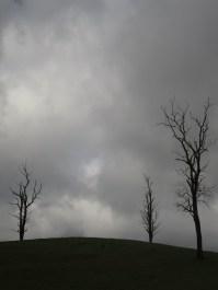 Prêts à saisir l'orage