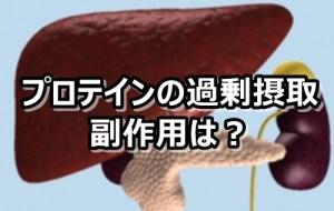プロテイン 肝臓 腎臓