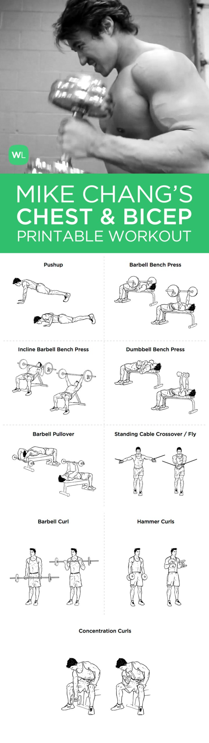 Images Of Bicep Workouts Chart Ehero