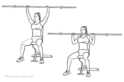 Image result for OVERHEAD PRESS