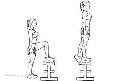 Image result for Dumbbell step-ups EXERCISE GIF