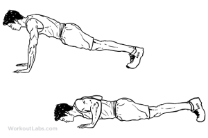 Pushup | Illustrated Exercise guide  WorkoutLabs