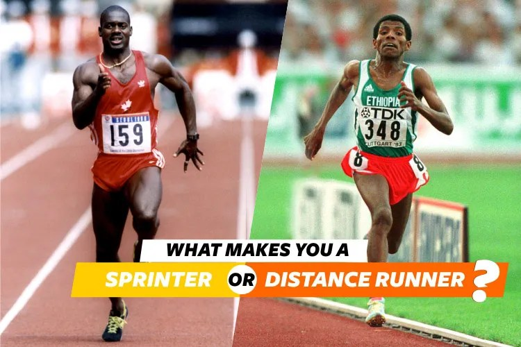 what makes you a sprinter or distance runner?