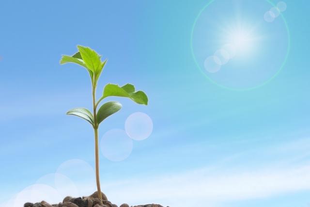 「困難を成長の機会へ変えるために、いま何に自己投資をすべきか」を考えるワークショップ