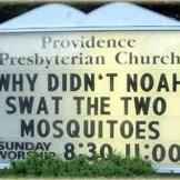 noahandthe2mosquitoes