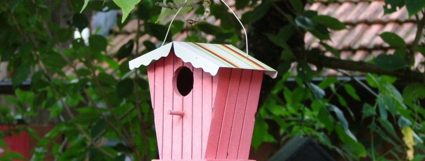 workshop vogelhuisje pimpen
