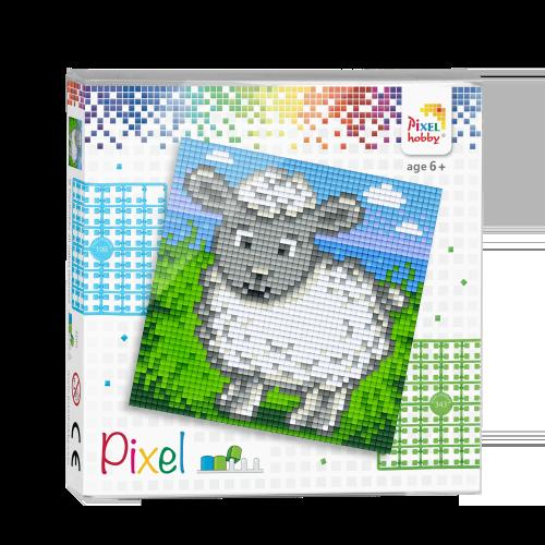 44008 pixel schaap