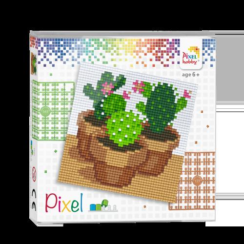 44009 pixel cactussen