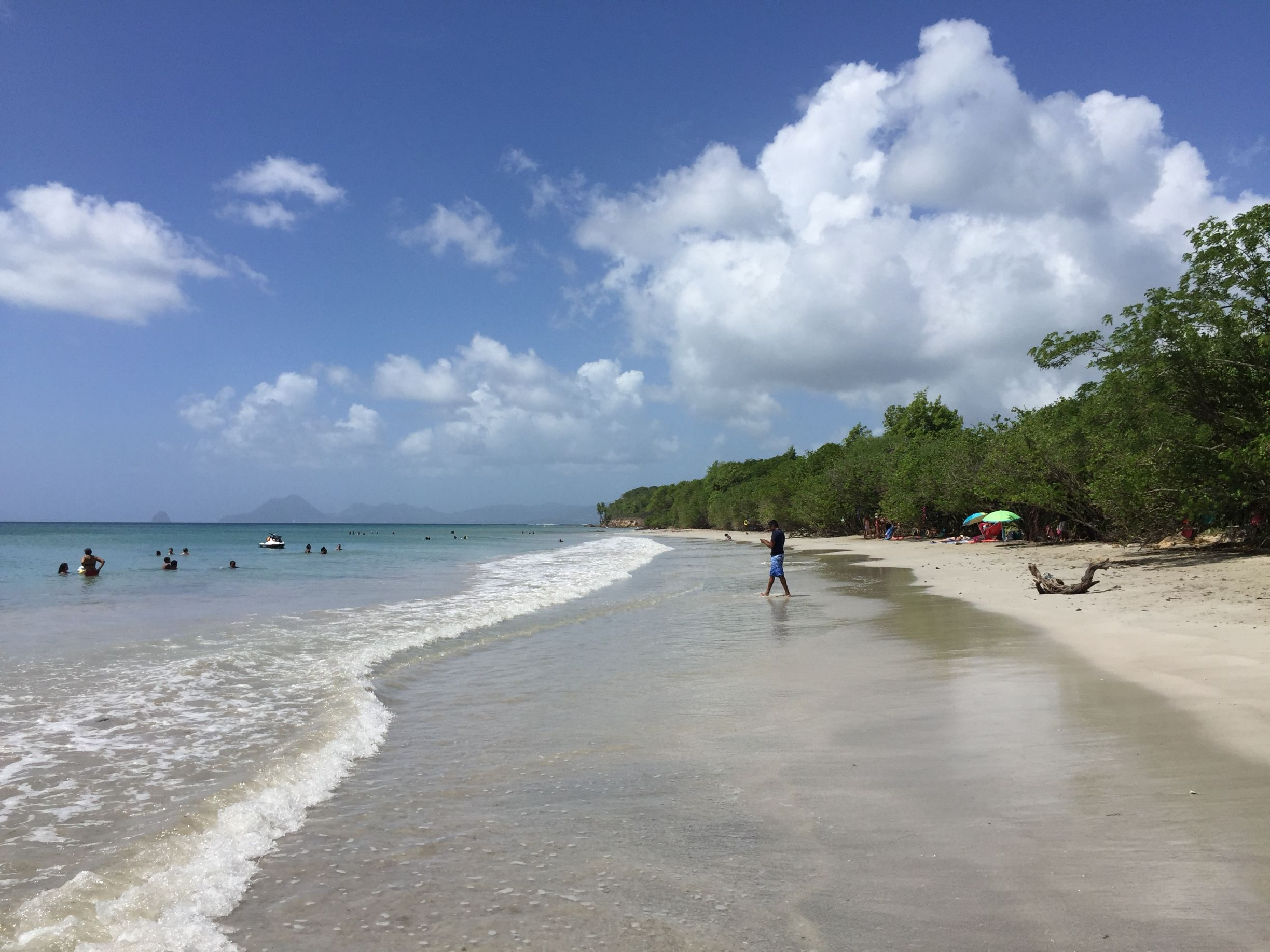 Martinique - Salines Beach