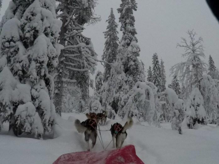 Lappland