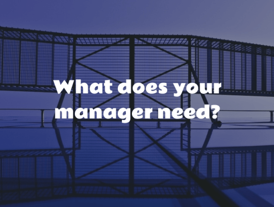 what your manager needs