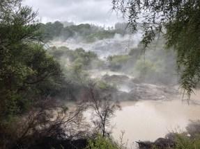 Thermal Reserve at Rotorua