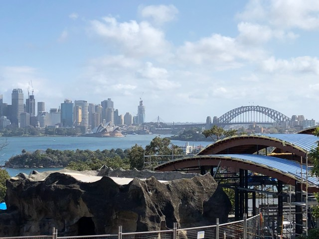 Best Things to Do in Sydney:  View of the city from Tarango Zoo