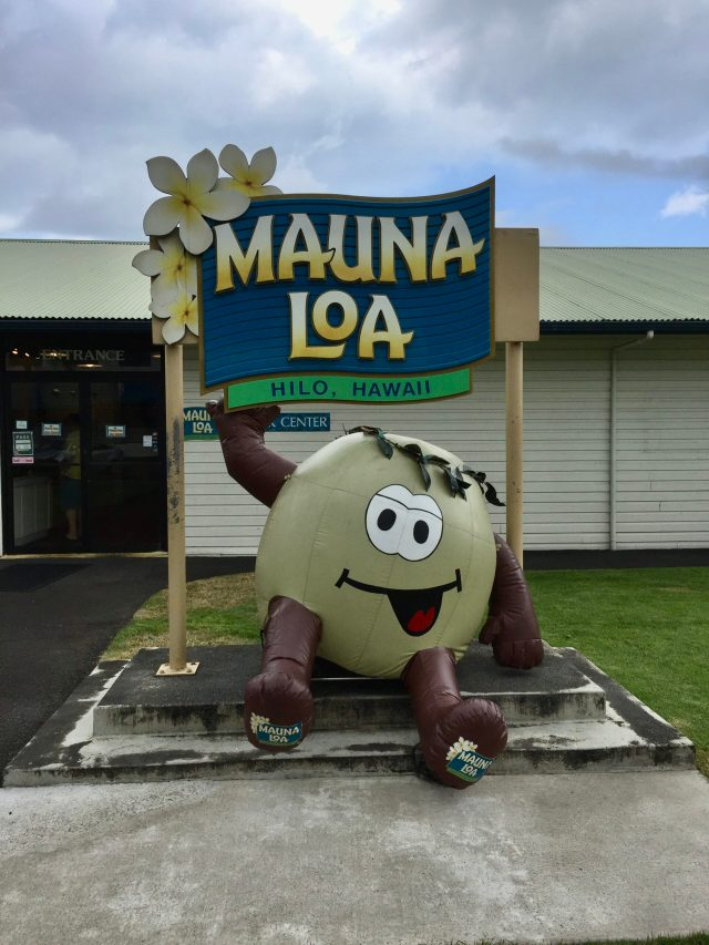 Best Things to Do on the Big Island:  Mauna Loa Macadamia Company Visitor Center
