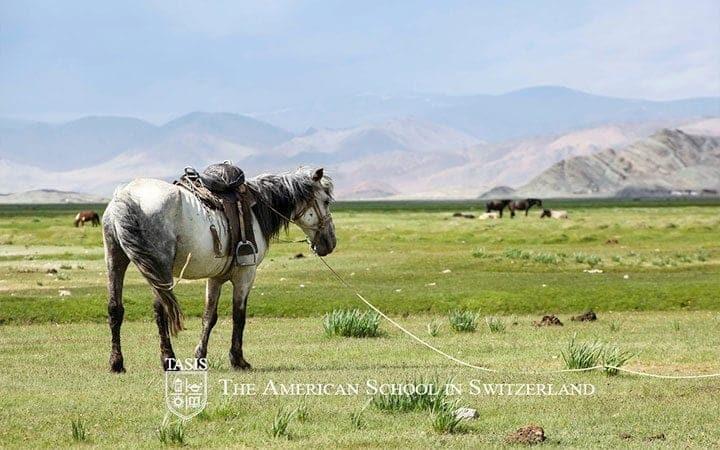TASIS-Mongolia-003