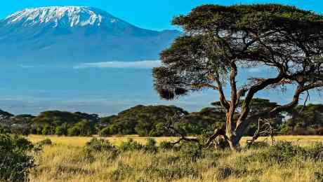 Featured-Full-Screen-Best-Kenya