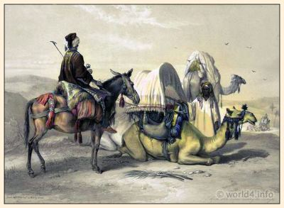 Traditional Arabian Costume. A caravan of camels. Kafila with a Camel Bearing a Hodesh
