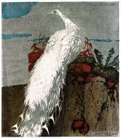 The White Peacock. Vienna Secession. Hans Frank. Art nouveau painting.