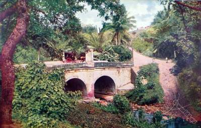 Horse-drawn carriage. Bayamon river. Puerto Rico national costumes. Creoles at Caribic islands. American colonialism.